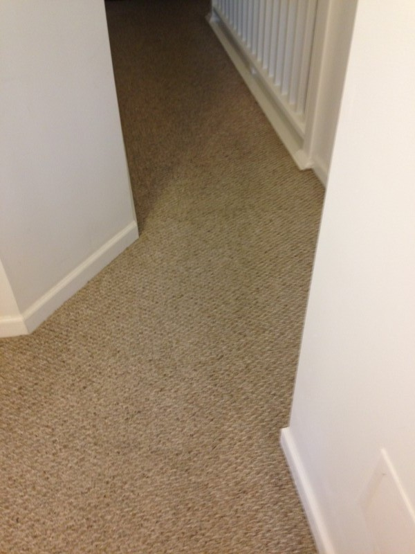 After Picture of Rug cleaned